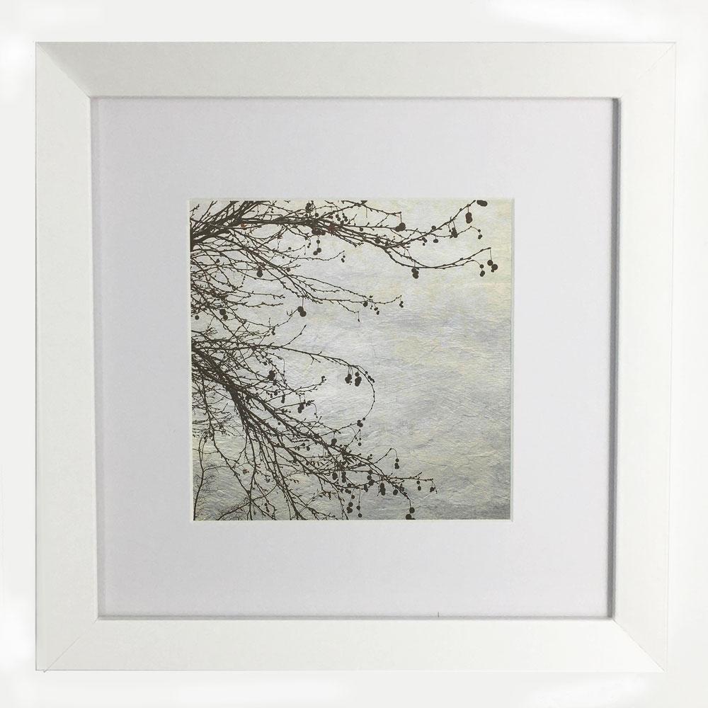 Winter Branches Framed Print - Littleredbirdy